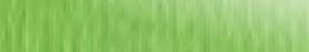 verde pisello ElleErre fabriano paper